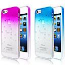Bubbles Gradient Color Transparent Back Case for iPhone 5/5S(Assorted Color)