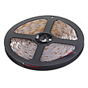 5M 4.8W 60x3528SMD Warm White Light LED Strip Light (DC 12V)