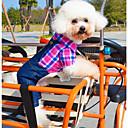 Camiseta/Calças - Verde/Rosa - de Algodão Cães