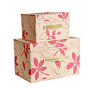 Buy Storage Boxes / Bags Units Nonwovens withFeature Lidded , Shoes Ties Underwear Cloth Quilts