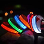 Katzen / Hunde Halsbänder LED-Lampen Solide Rot / Weiss / Grün / Blau / Gelb / Orange Nylon