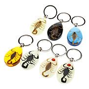 Scorpion Bernstein Schlüsselanhänger (zufällige Farbe)
