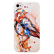 The Five Colours Bird Back Case for iPhone 4/4S