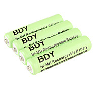 BDY Ni-MH AAA Rechargeable Battery (1.2v, 750 mAh)