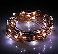 5M 50-LED Natural White Copper Wire String Fairy Light with AC Adapter Set (100-240V)