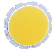 DIY 10W 800LM 3000K Warm White Light COB LED-Strahler (32-36V)
