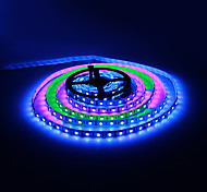 5M 30W 60x5050SMD RGB Light LED Strip Light with Remote Control and 12V 5A Adapter