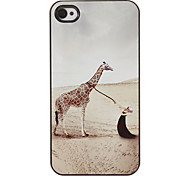Beauty and Giraffe Pattern PC Hard Case with 3 Packed HD Screen Protectors for iPhone 4/4S
