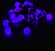 5M 15W 20-LED Blue Light Ball Shaped LED Strip Light (220V)