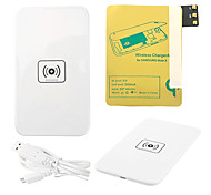 Bianco Wireless Power Charger Pad + Cavo USB + ricevitore Paster (Gold) per Samsung Galaxy Nota3 N9000