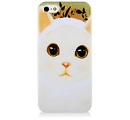 Cat Pattern Silicone Soft Case for iPhone5/5S