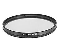 Filtro CPL para la cámara (77mm)