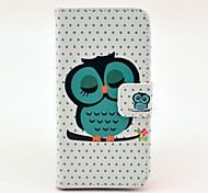 Beautiful Sleeping Owl Pattern Full Body Leather Hard Case with Card Holder for iPhone 5C