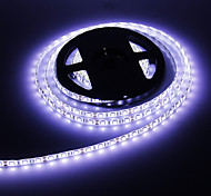 La lumière blanche froide 5M 60W 60x5050SMD 3000-3600LM 6000-7000K Étanche LED bande de lumière (DC12V)