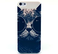 Sunglass Cat Pattern Hard Case for iPhone 5C
