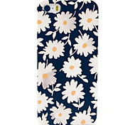Beautiful Daisies Pattern Hard Case for iPhone 5/5S