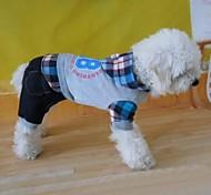 Hunde Mäntel Grau Winter Buchstabe & Nummer / Jeans