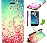 Cherry Blossoms in Full Bloom Pattern PU Leather Case with Screen Protector and Stylus for iPhone 5C