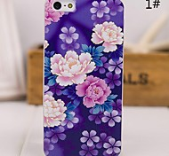 Beittal® China Style Pattern Painting PC Hard Cover for iPhone5/5s ip5zgfch