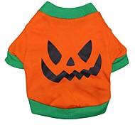 Katzen / Hunde T-shirt / Kleidung / Kleidung Orange Frühling/Herbst Karton