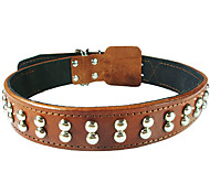 Cody Durable Cow Leather Rivets Collar for Pets Dogs