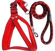 Cody Durable Nylon Leashes with harness for Pets Dogs