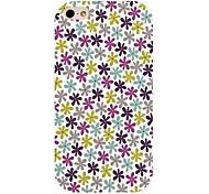 il colorato fiore modello posteriore Case for iPhone 4 / 4s