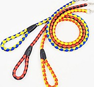 Dacron Cell Pattern Leash for Pet Dogs(S,Random Colour)
