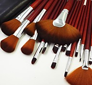 24pcs Red Professional Fashion Makeup Brush Set with Black Package