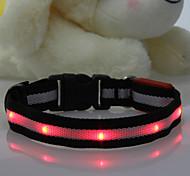 - Rot - Nylon - LED-Lampen