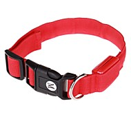 Dog Collar Plastic / Nylon