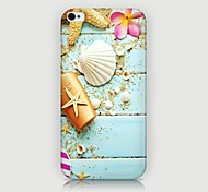 Seashell Pattern Back Case for iPhone4/4S