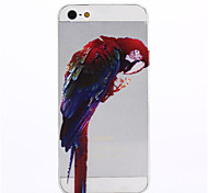 Parrot Pattern Soft TPU Case for iPhone 5/5S