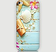 Seashell Pattern Back Case for iPhone5/5S