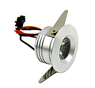 LED Embedded Small Spotlight CC-141-A2 1W Warm White Constant Current Source AC90-260V