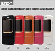 aiqaa® vera pelle magnetico ultra-sottile flip caso vista blu-ray finestra con supporto per iPhone 6 (colori assortiti)