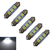Festoon Luces Decorativas 3 SMD 5050 60lm lm Blanco Fresco DC 12 V 5 piezas