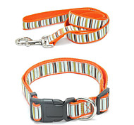 Fasion Rainbow Pattern Pet Collar & Leash Set for Dogs (Assorted Sizes)