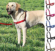 Adjustable Nylon Easy Walk Dog Harness with 120cm Leash for Pet (Assorted Colors,Sizes)