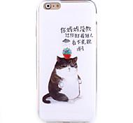 cat pattern Peeling klebt tpu Rahmen combo Telefonkasten für iphone 6