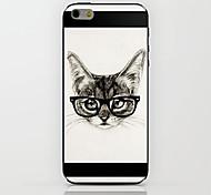 bebrillte cat Muster Hülle für das iPhone 6
