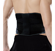 Ollas Unisex Outdoor Activities Black Nylon EVA Waist/Back Protective Gear with High-elastic Pressed Belts S9311