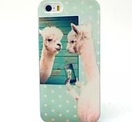 modello alpaca materiale TPU soft phone per iphone 5c