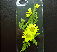 Real Flower Phone Cases for iPhone L-SJK001