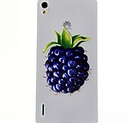 Blueberry Pattern TPU Material Soft Phone Case for Huawei P7