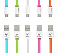 Oldshark 3.3ft USB 2.0 Noodle Flat Charging Cable with ABS Shell for Samsung HTC Cellphone
