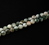Beadia 39Cm/Str (Approx 68Pcs) Natural Tree Agate Beads 6mm Round Stone Loose Beads DIY Accessories