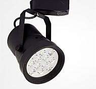 HRY® 12W 12LEDS 1000LM LED Track Lights(220V)