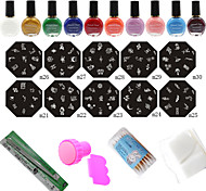 Professional 10Pcs Nail Art Stamp Image Plates + Stamper & Scraper + 10 Colors Printing Oil Tools Set