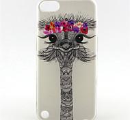 adorável avestruz sonhando padrão pintura sol TPU soft case para o iPod touch 5 / touch 6